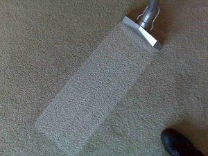 carpet_cleaner_nj